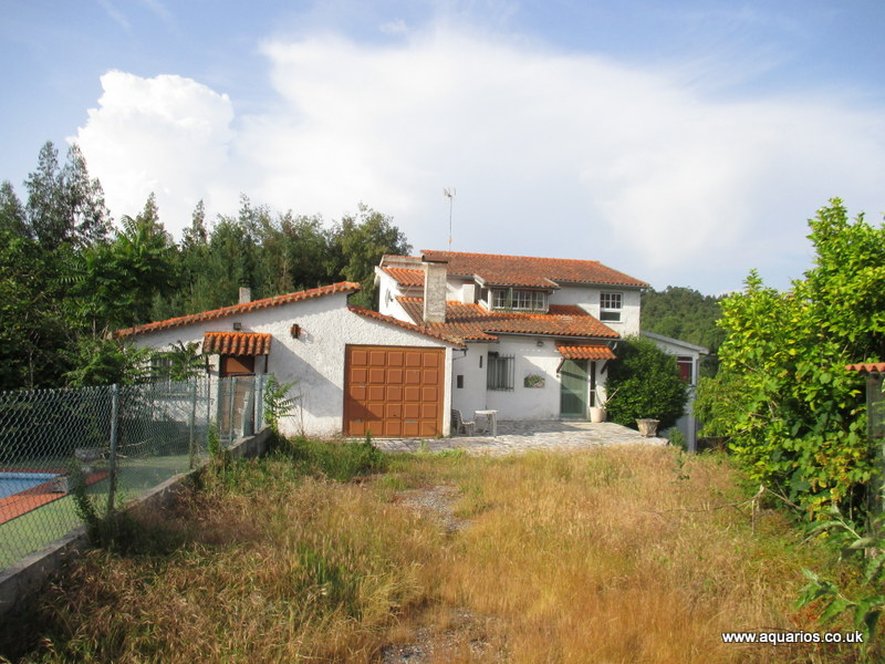 3 Houses and Swimming pool with Land